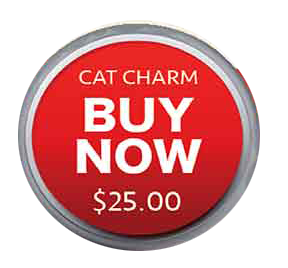 click to buy charm