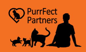 CatRescue PurrFect Partners
