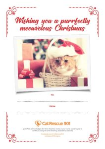 CatRescue 901 Valentines Day Gift Certificate