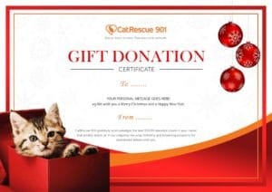 CatRescue 901 gift donation certificate